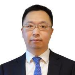 David Luo (Partner at Grant Thornton)